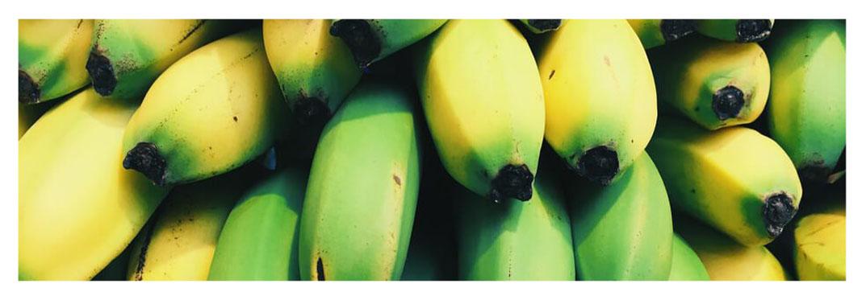 plátano-canario