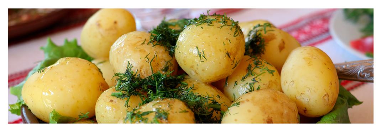 Recetas-cocina-villa-gran-canaria