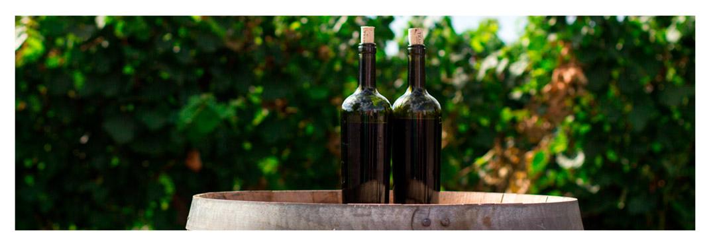 Unique-wine-villa-gran-canaria