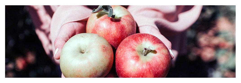 Fiesta-de-la-Manzana